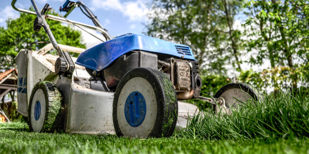 Lawn Care Spring