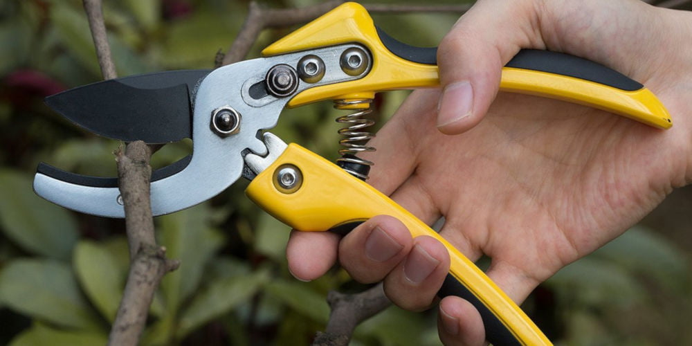 Vilapur Professional Pruning Shears